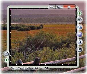 скрин программа скачать бесплатно - фото 11